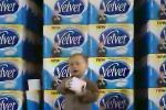 Velvet Toilet Tissue - Executive Orders